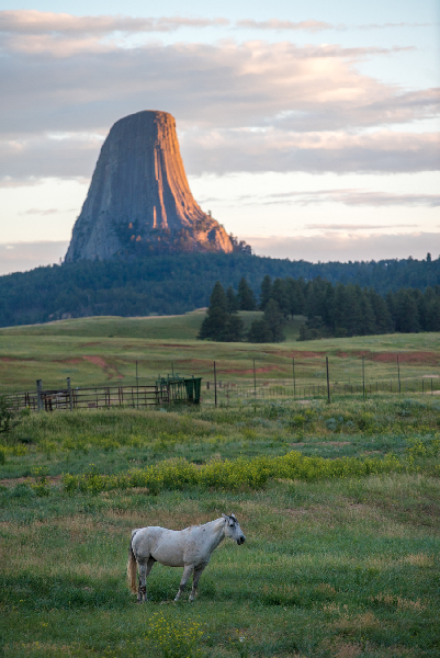 Devils Tower Sunset